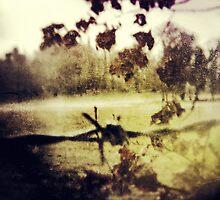 Forbidden Memory by Sybille Sterk