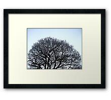 Brains Of Nature Framed Print