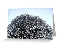 Brains Of Nature Greeting Card