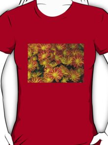 Mums - Red & Yellow T-Shirt