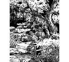 Stone Lantern 2, Kanazawa Photographic Print