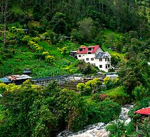 Andean Trout Farm by Paul Wolf