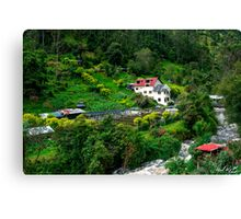 Andean Trout Farm Canvas Print