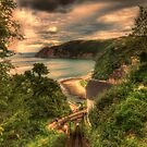 Lynmouth Clifftop by Dean Messenger