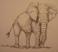 Africana Elephanta, Loxodanta Africana  by KarenJI1962