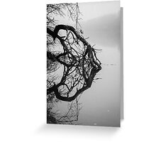 Black&white tree with its reflection in the river Greeting Card
