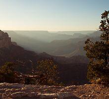 Grand Canyon Near Sunset by Colin Butterworth