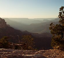 Grand Canyon Near Sunset by Colin Butterworth