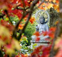 Buddha in Autumn by Michelle Hardy  Photography