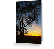 Enter the Night Greeting Card