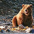 Brown Bear FishingPS by jkgiarratano