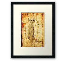 Cracked Meerkat guard Framed Print