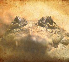 Crocodylus Moreletii Close up by Maria Tzamtzi