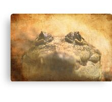 Crocodylus Moreletii Close up Canvas Print