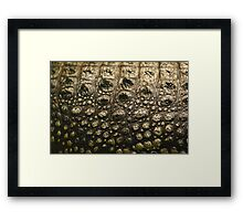 Crocodylus Moreletii Skin Framed Print