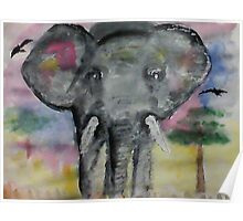 Elephant checking you out, watercolor Poster