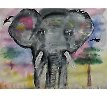 Elephant checking you out, watercolor Photographic Print
