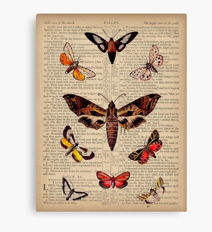Butterflies on Psalm 91 Canvas Print