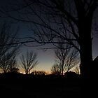 Silhouette sunset behind the trees by Jared Campbell