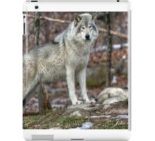 ...the King..the Grey '' or Timber Wolf.... iPad Case/Skin