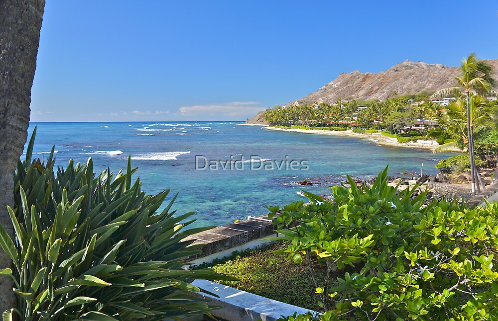 Diamond Head by David Davies