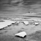 Snow & Ice Melting in front of Antelope Island II by utahwildscapes