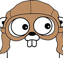 golang by mikebubblr