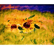 A field of sunflowers, watercolor Photographic Print