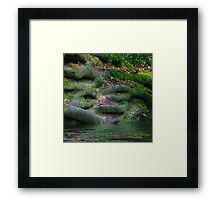 Roots in the Hundred Acre Wood Framed Print