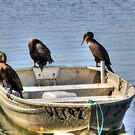 Dont Rock The Boat  by Kym Bradley