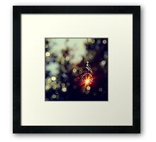 When wishes come true Framed Print