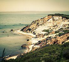 Gay Head Cliffs, Aquinnah, Martha's Vineyard, Massachusetts by Elizabeth Thomas