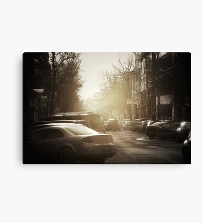 sunny side right Canvas Print