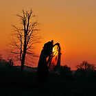 Dancing Silhouette by Ian Tilly