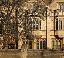 Magdalen College, Oxford by Irina Chuckowree