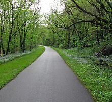 Springtime on the Bike Path by Lynn Gedeon
