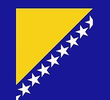 Bosnia Herzegovina Flag by pjwuebker