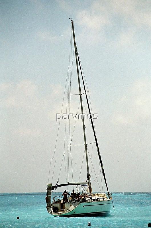 Υachtsman in the sea by parvmos