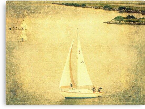 Lazy Day Sailing 2 by AuntDot