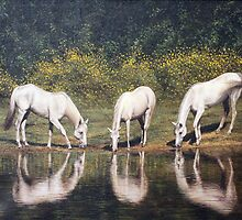 "Fine art equine painting ""Time to reflect"" by barryjdavisart"