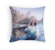 Värnamo & Lagan Throw Pillow