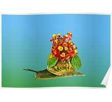 Snail and flowers Poster