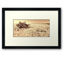 Low Tides on South Beach in Nassau, The Bahamas Framed Print