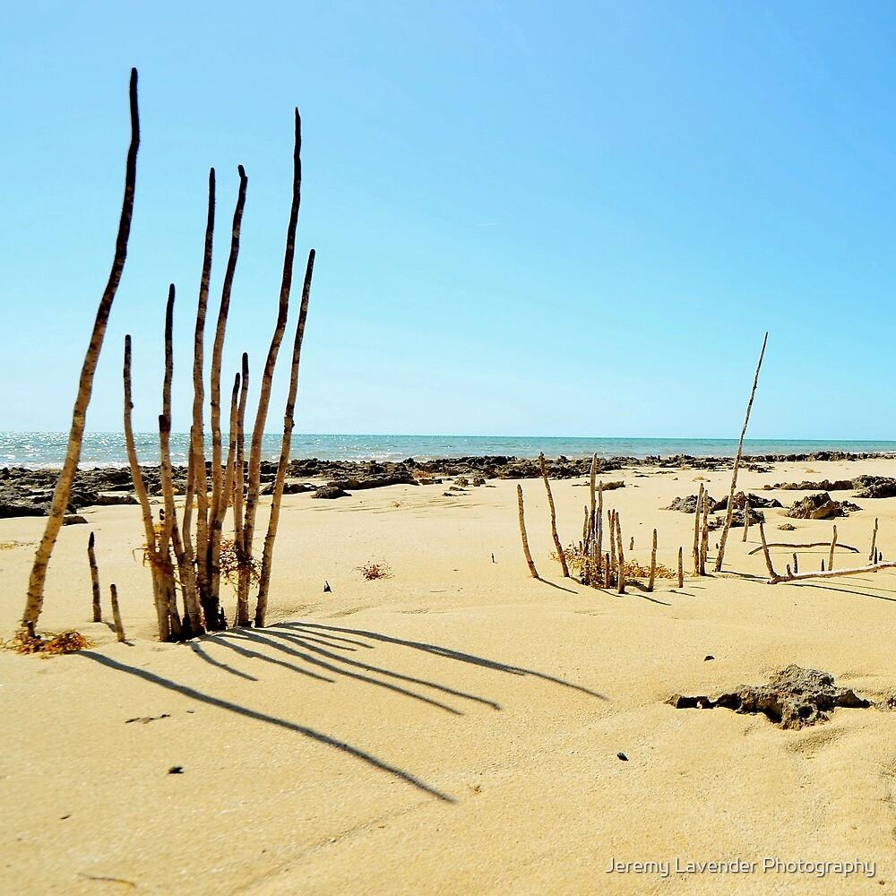 The Sand Sentinels by Jeremy Lavender Photography