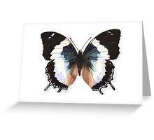 Butterfly Charaxes Species, Blue Greeting Card