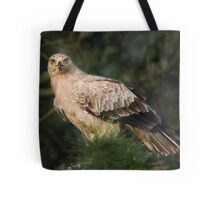 Tawny Eagle Tote Bag