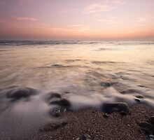 Last of the light by willgudgeon
