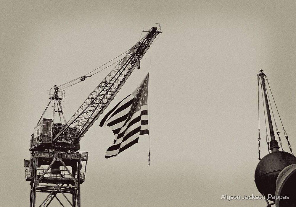 America by Alyson Jackson-Pappas