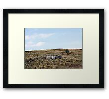 Space to Breathe Framed Print