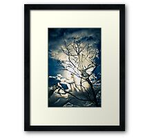 Eco Friendly  /  6 Framed Print